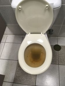 blocked toilet caused by blocked sewer drain