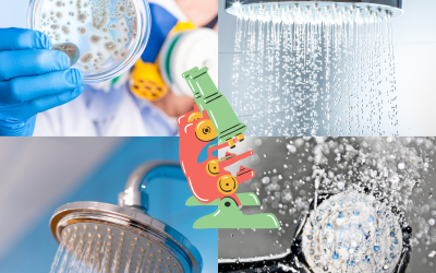 Is bacteria & mould in your showerhead making you sick?