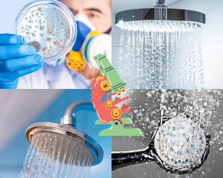 bacteria in your showerhead